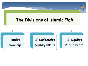 divisions of islamic fiqh