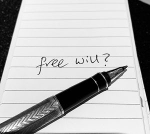 free will, guidance and and destiny explained